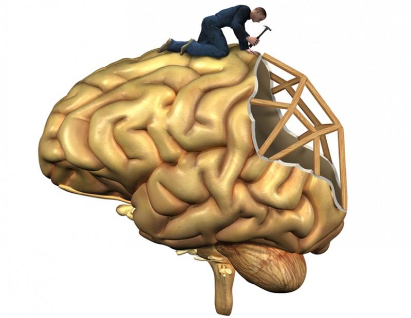 Восстановление клеток головного мозга после алкоголя